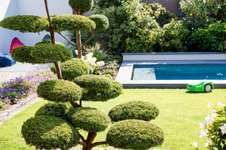 Link zur Bilddatei: schulze-tertilt_warendorf_muenster_galerie-privatgaerten_0004_poolbau_swimmingpool